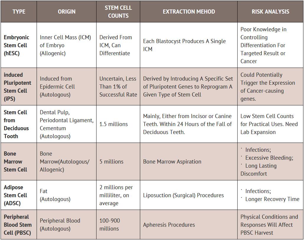 Stem Cell Basics - Enhance Cell Bank